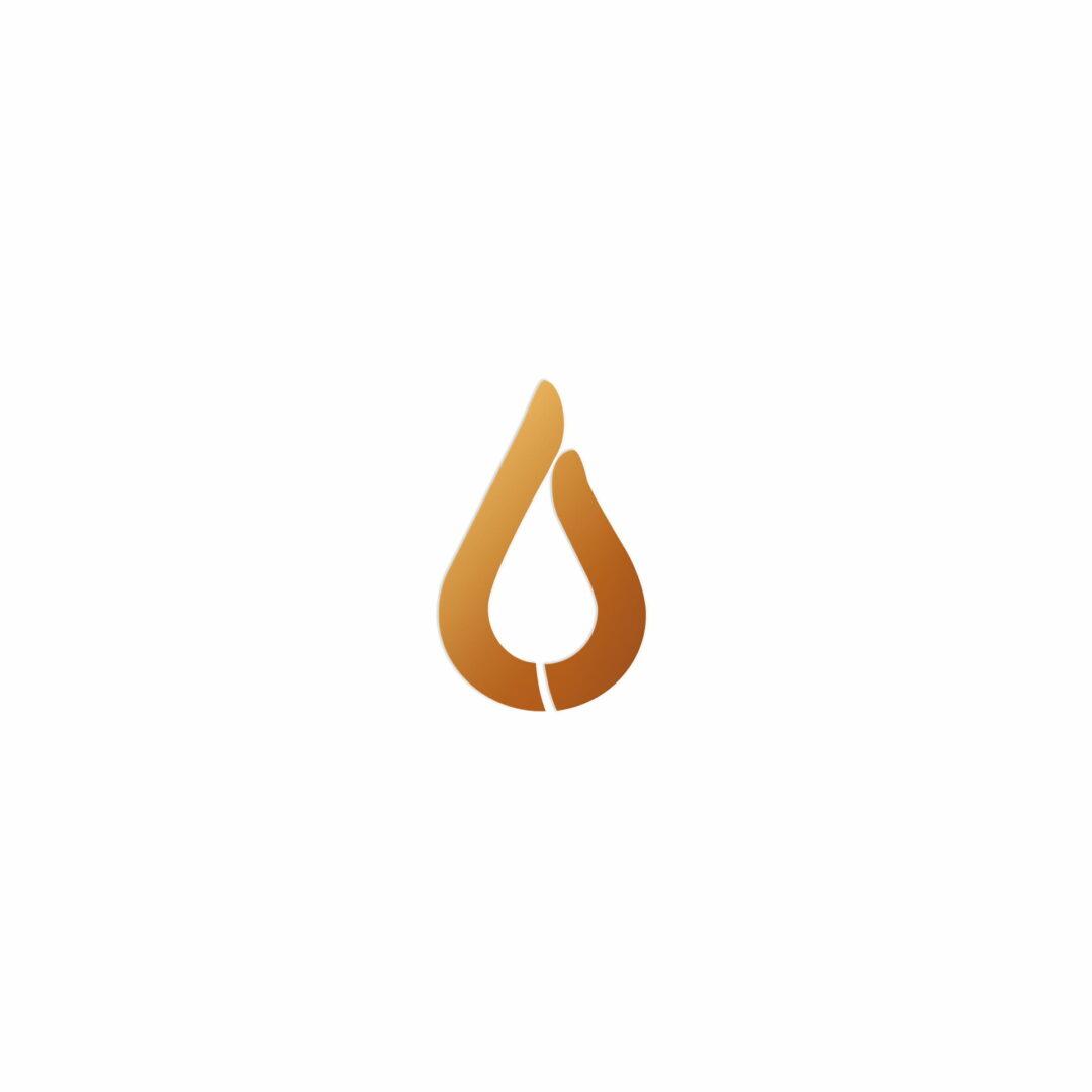 Sygnet logo fizjoterapeuty Hawryło