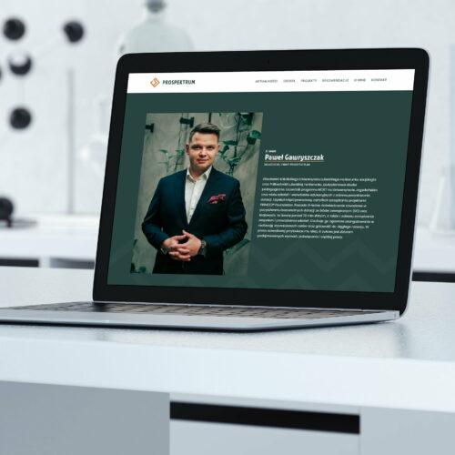 Wizualizacja projektu graficznego witryny firmy B2B #prospektrum